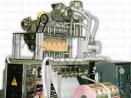Фасовочная машина многоручьевая ДЕЛЬТА-5
