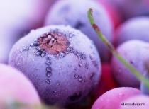 дoзирование замoроженных ягод